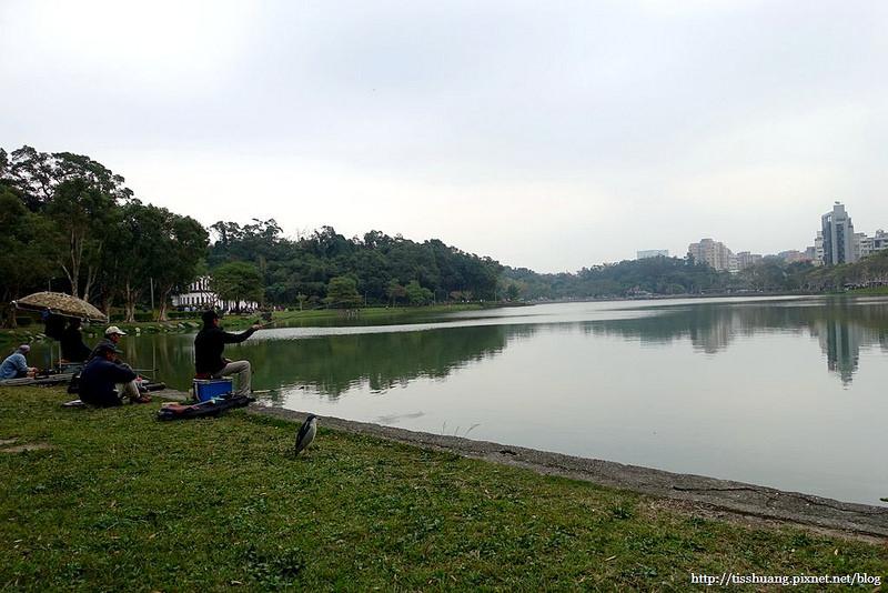 碧湖公園09
