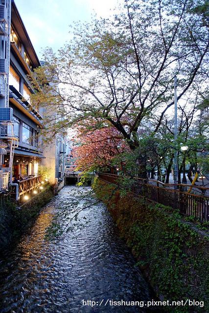 京都哲學之道清水寺177