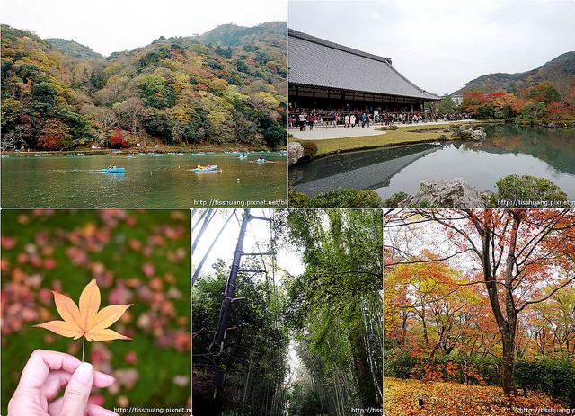 京都第五天70