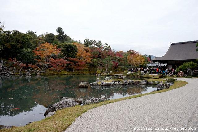 京都第四天135