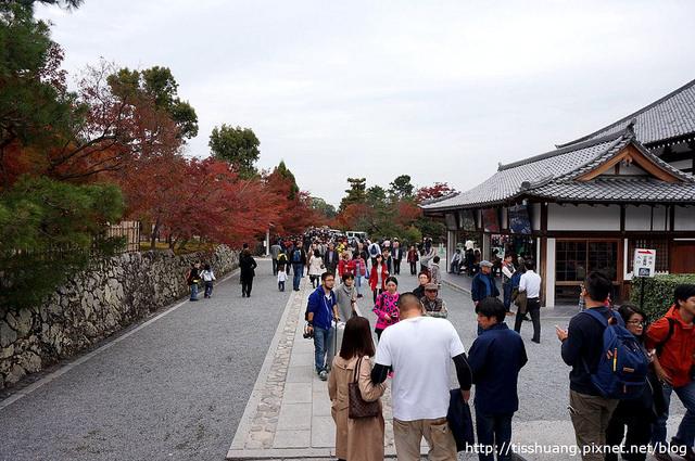 京都第四天154