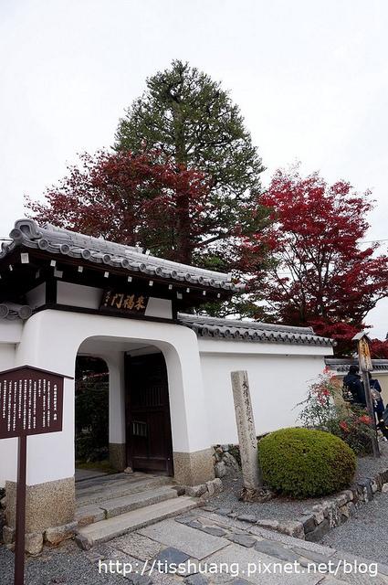 京都第四天155