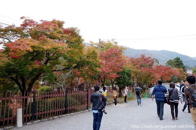 京都第四天157