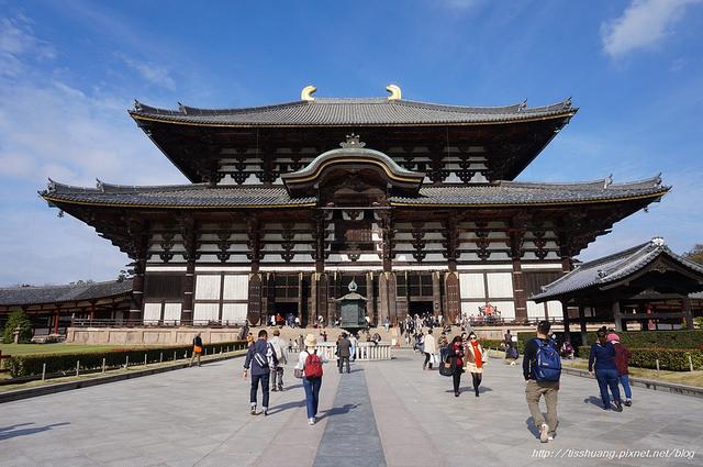 日本奈良東大寺-世界文化遺址,我與鹿的第一次親密接觸